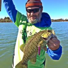 stinger smallie